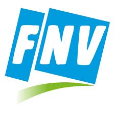 logo fnv